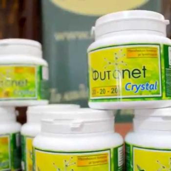 Φυτοnet crystal